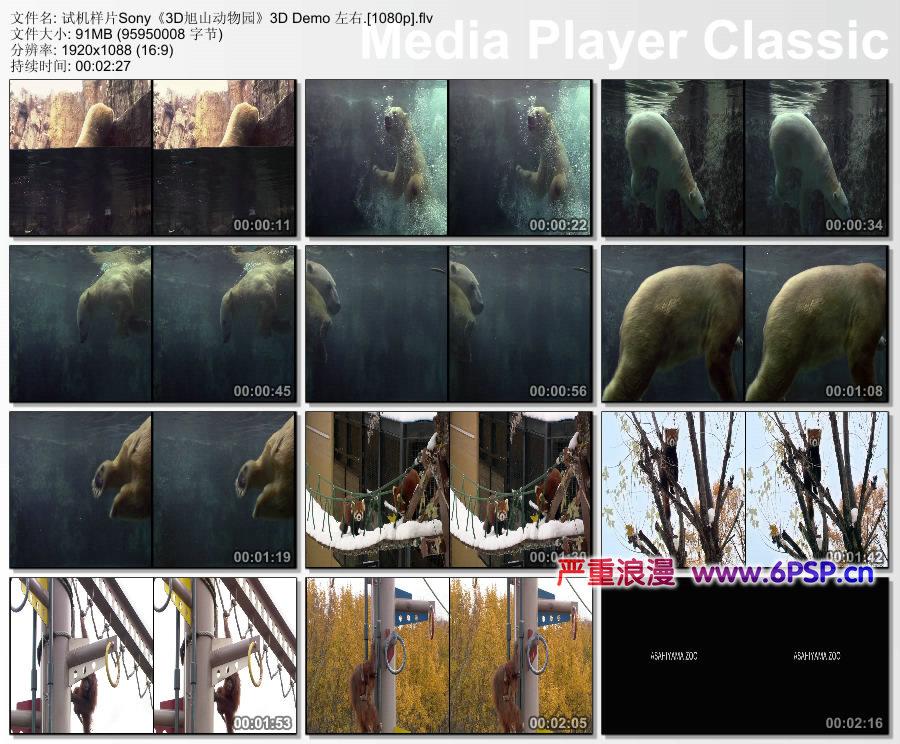 3D旭山动物园